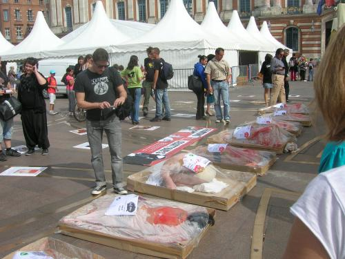 pic6 - report-toulouse-france-25-09-2012